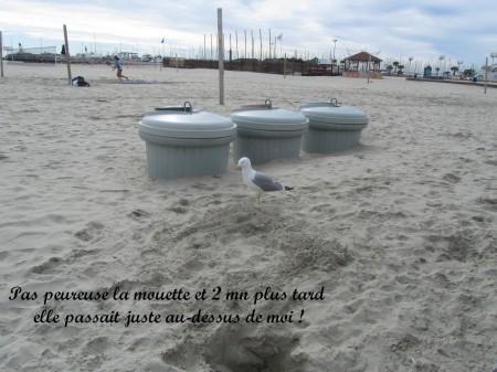 les plages (17)