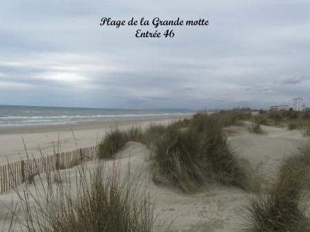 les plages (31)