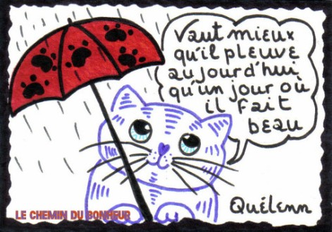 aphorisme-de-Monsieur-LE-CHAT